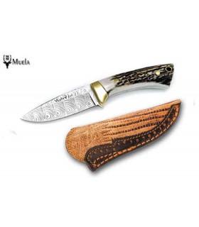 Couteau de chasse Muela Colibri Lame Damas de 7 cm -