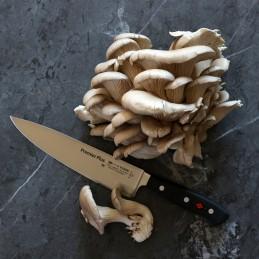 Dick 8.1447.21 ( 8144721 ) Série Premier Plus Couteau Chef lame de 21 cm -