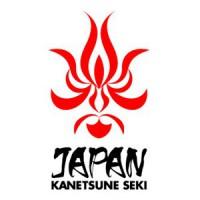 Couteau de cuisine Japonais Kanetsune